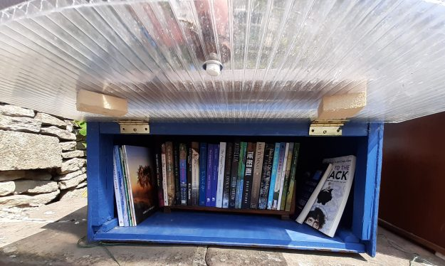 Photo of interior of adult book box